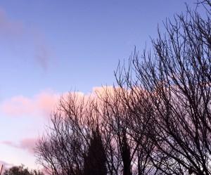 5- Winter Sunset from backyard